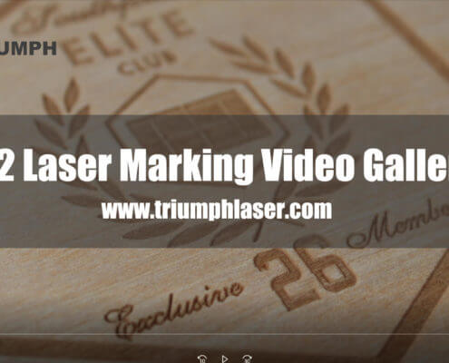 CO2 Laser Marking Video Gallery