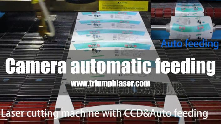 Camera automatic feeding laser cutter