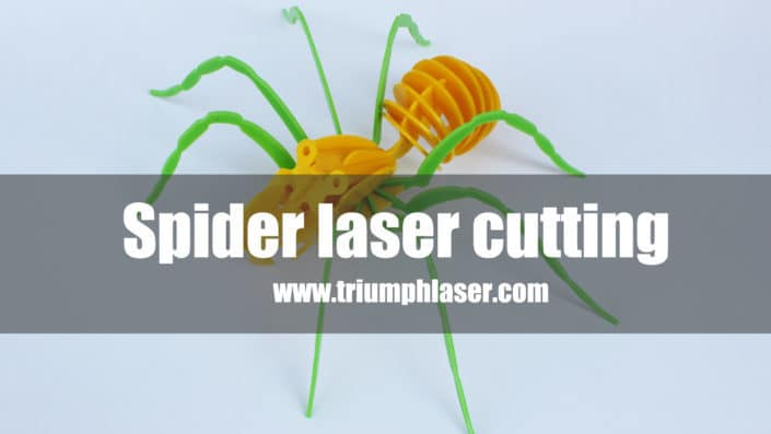Laser cutting machine for acrylic 3D spider model laser cutter