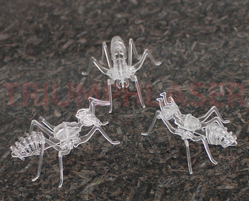 acrylic laser cutter 3D ant